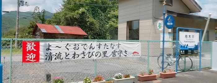 柏木平駅 is one of JR 키타토호쿠지방역 (JR 北東北地方の駅).