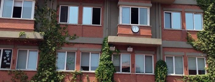 Açı İlköğretim Okulu is one of Orte, die Emre gefallen.