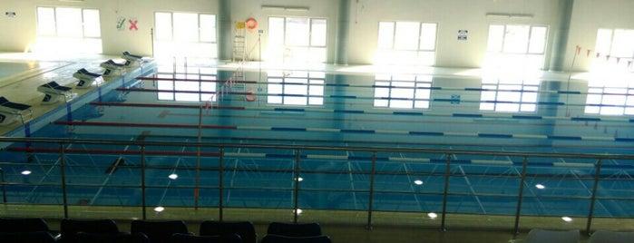 düzce üniversitesi havuz is one of Özgür Yaşar'ın Kaydettiği Mekanlar.