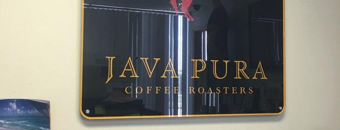 Java Pura is one of houston coffee.