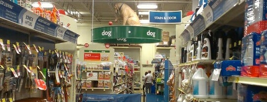 PetSmart is one of Lugares favoritos de Val.