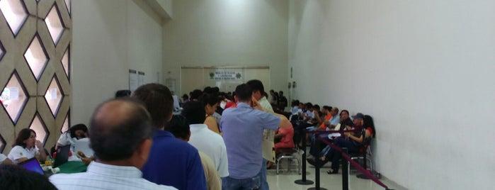 Modulo de Licencias y Placas SSP is one of Orte, die laura gefallen.