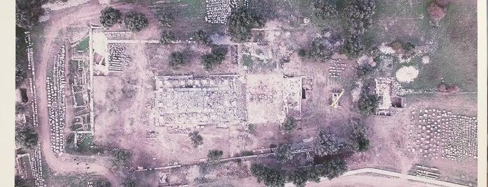 Teos Antik Kazı Alanı is one of Sığacık.