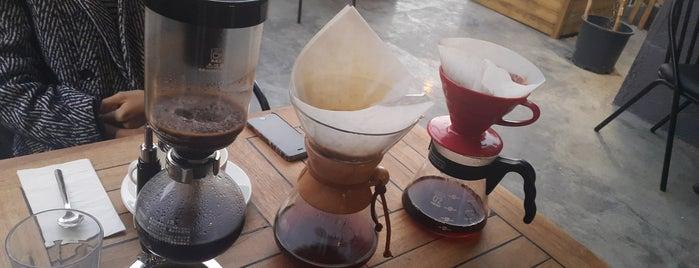 Court Coffee Company is one of Kuşadası.