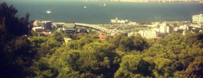 Cici Park is one of hamza'nın Beğendiği Mekanlar.