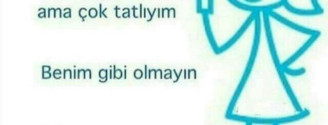 Zeki Triko is one of Antalya.