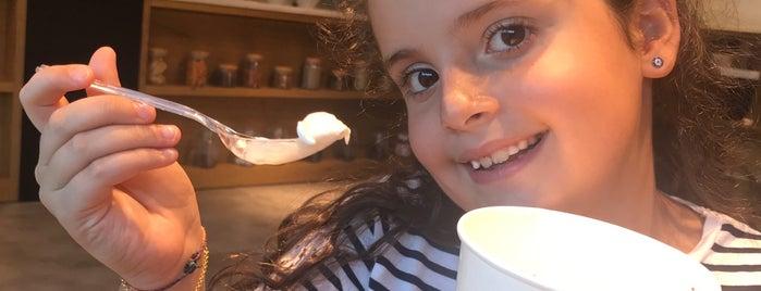 Yogart Frozen Yogurt & More is one of baris homessa.