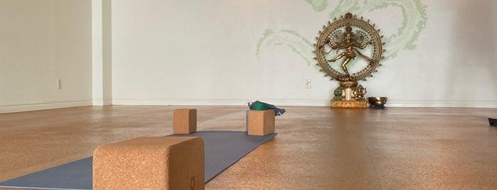 Pura Vida Yoga is one of San Diegoooo.