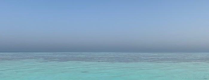 جزيرة بياضة is one of Jeddah.