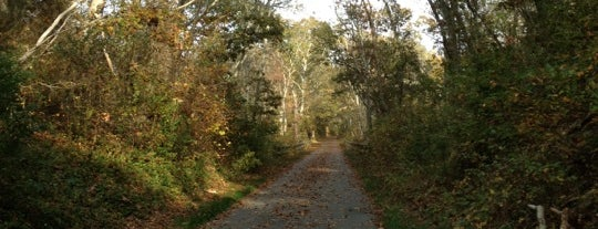 Cape Cod Bike Trail is one of Tempat yang Disimpan Oliver.