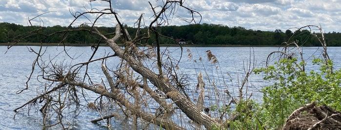 Lednické rybníky is one of cyklovýlety.