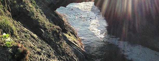 Mendocino Headlands State Park is one of Road Trip: San Francisco to Portland.