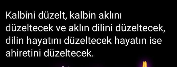 Muteks Mutlubaşlar Örme İhtisas San. İç ve Dış Tic.Ltd.Şti. is one of DENİZLİ BÖLGESİ, TEKSTİL&KONFEKSİYON İMALATÇILARI.
