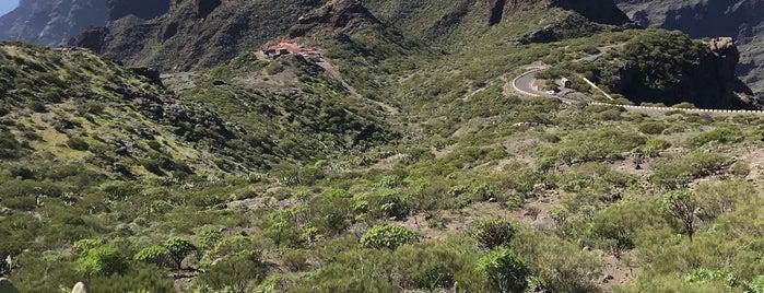 Mirador de Cherfe is one of Turismo por Tenerife.
