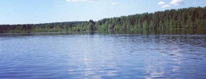 Красное Озеро is one of Stanislavさんのお気に入りスポット.
