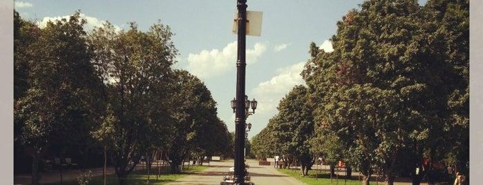 Парк Плевен is one of สถานที่ที่ Natalie ถูกใจ.
