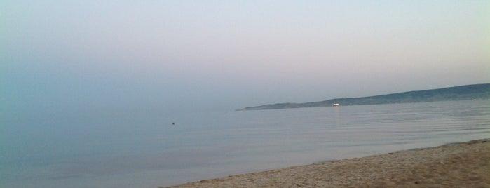 Золотой пляж is one of Sashaさんのお気に入りスポット.