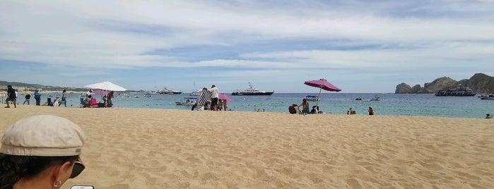 Cabo San Lucas is one of Orte, die Armando gefallen.