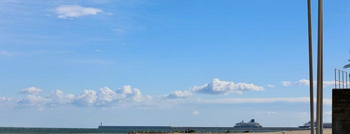 La Lonja De Valencia( Puerto) is one of Tempat yang Disimpan Paco.