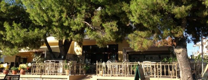 Βεγγέρα is one of สถานที่ที่ Ελενη ถูกใจ.