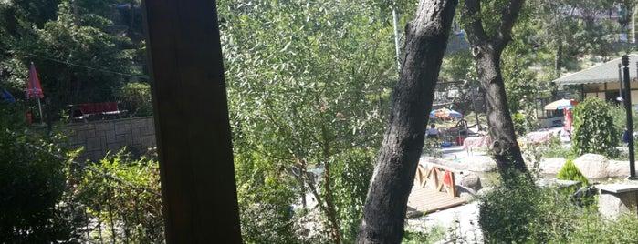 Şehitler Parkı is one of ordan burdan.