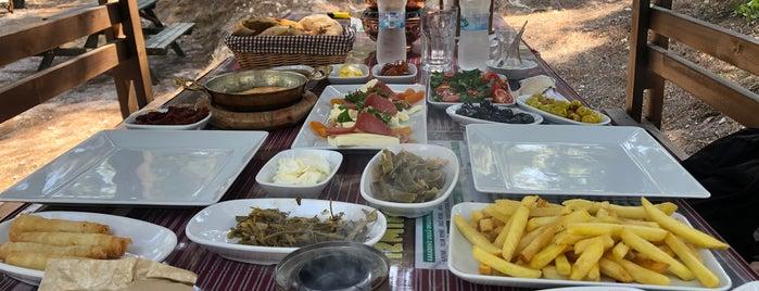 Moment Park Piknik Alanı is one of Lieux sauvegardés par Ayşegül.