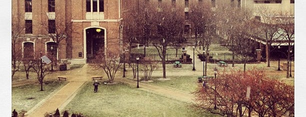 DePaul University Quad is one of Lincoln Park Campus History.