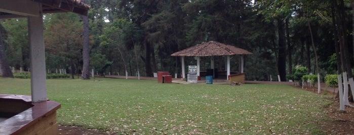 """Parque """"La Pinera"""" is one of Tempat yang Disimpan Cyril."""