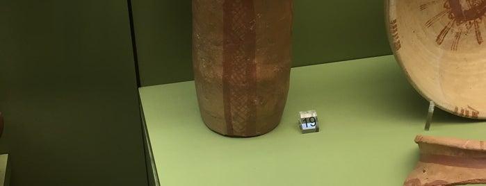 Museu Municipal de Arqueologia de Silves is one of Lieux sauvegardés par MENU.