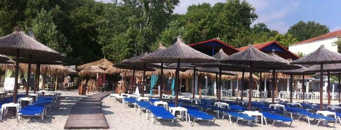 Χαλαρά Beach Bar is one of Tempat yang Disukai Marko.