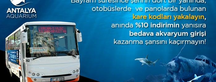Antalya Aquarium is one of Locais salvos de Gürk☆n.