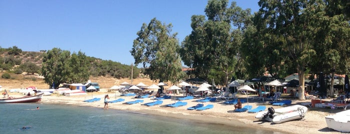 Voodoo Beach is one of İzmir İzmir.
