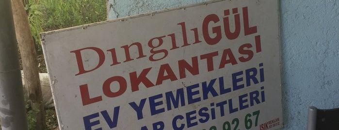 Dıngılı Gül Lokantası is one of Iğdır.