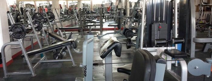 Energy gym is one of Gaby: сохраненные места.