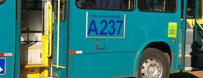 Linha A237 - Terminal Umuarama - Morumbi is one of Work places.
