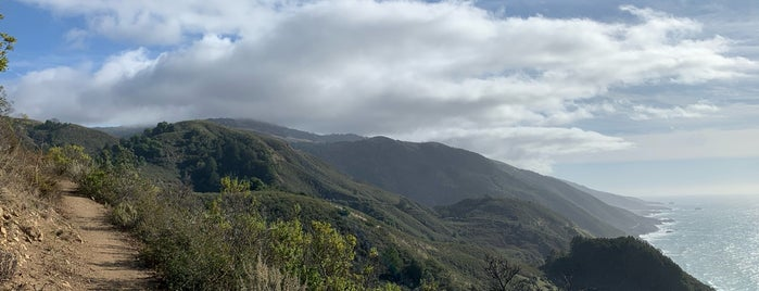 Los Padres National Forest is one of HWY1: Santa Cruz to Monterey/Carmel.