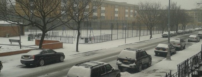 Eleanor Roosevelt Playground is one of Where to play ball — Public Courts.