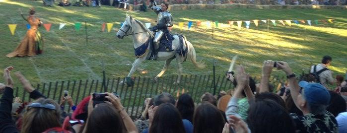 Medieval Festival is one of Lugares favoritos de Sarah.