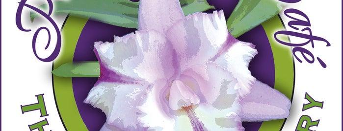 Thai Purple Orchid Café & Grocery is one of Gespeicherte Orte von Karina.