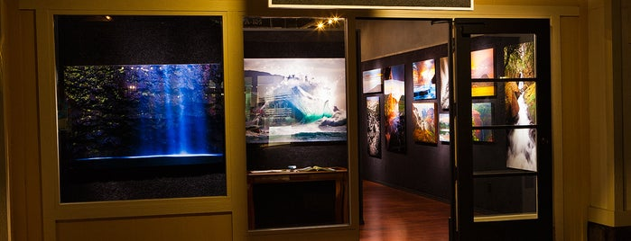aFeinberg Gallery Poipu is one of Hawaii favs.