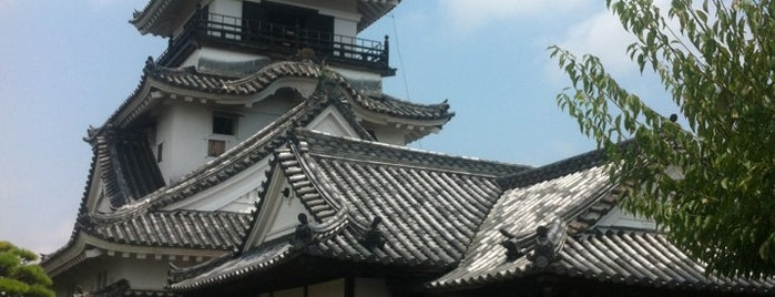 Kochi castle is one of Places - Japan.