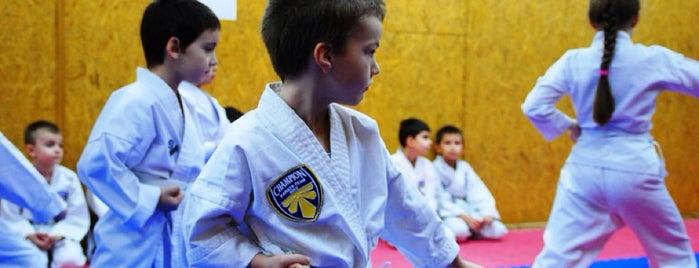 Champion Karate Club is one of Persona : понравившиеся места.