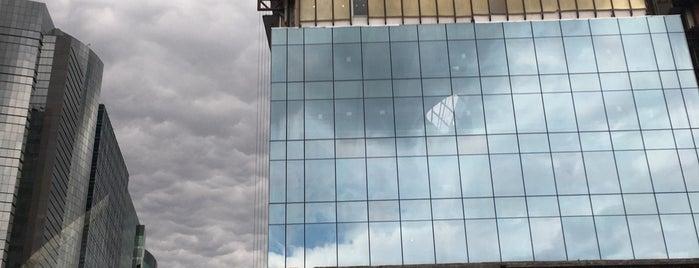 Torre Scotiabank is one of Orte, die René gefallen.