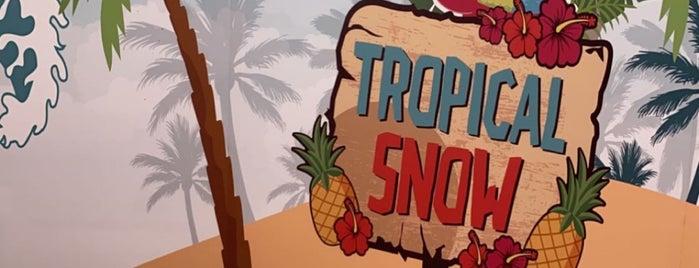 Tropical Snow is one of Posti salvati di Amal.
