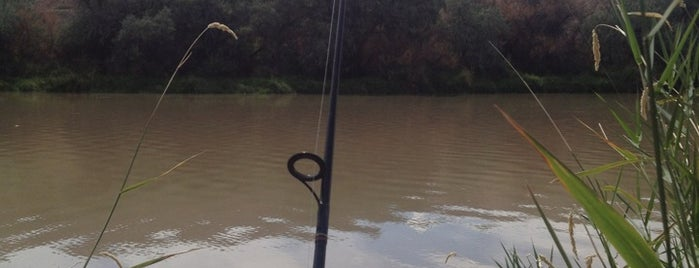 Fishing is one of CO Fly Fishing.