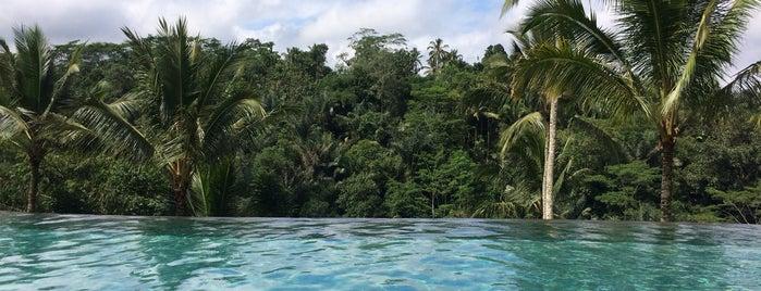 Swimming Pool @ Padma Resort Ubud is one of Tempat yang Disukai Serhat.