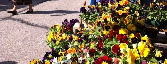Brookfield Farmers' Market is one of Milwaukee Essentials.