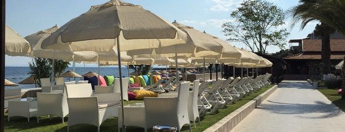 Palm Beach Otel is one of Bayram.