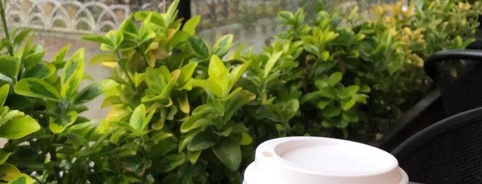 Mikel Coffee is one of İstanbul - yeni gidilecek.