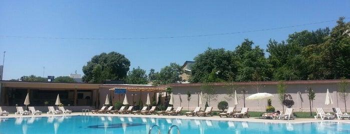 Villa Grand ( Grand Mir Hotel ) Swimming Pool is one of Узбекистан.
